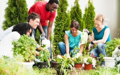 5 Reasons Gardening is Good For Your Health
